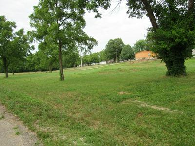 LOT C SOUTH SECOND STREET, Conway, MO 65632 - Photo 2