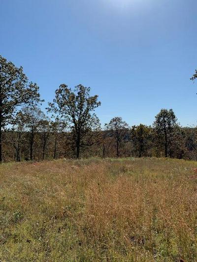LOT 25-A PALAMINO DR., Highlandville, MO 65669 - Photo 2