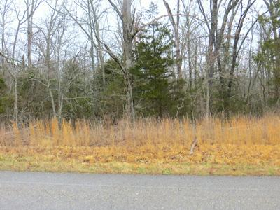 000 HIGHWAY 178 WEST, Midway, AR 72651 - Photo 2