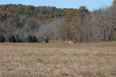 TRACT 1 TBD COUNTY ROAD 549, Ellington, MO 63638 - Photo 1