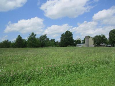401 S WEST AVE, Republic, MO 65738 - Photo 2