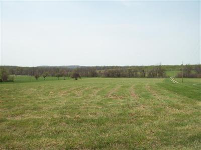 0 PECK HOLLOW ROAD L 14, Rogersville, MO 65742 - Photo 1