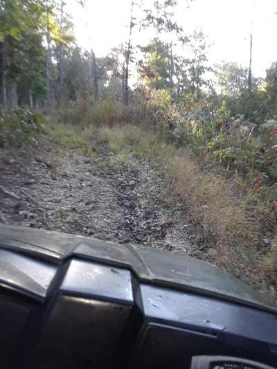 647 COUNTY ROAD 550, Tecumseh, MO 65760 - Photo 2