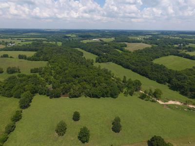 TBD STATE HIGHWAY M, BILLINGS, MO 65610 - Photo 2