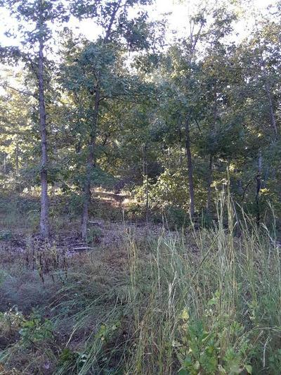 647 COUNTY ROAD 550, Tecumseh, MO 65760 - Photo 1