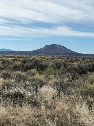 3500 OFF OIL DRI ROAD, CHRISTMAS VALLEY, OR 97541 - Photo 1
