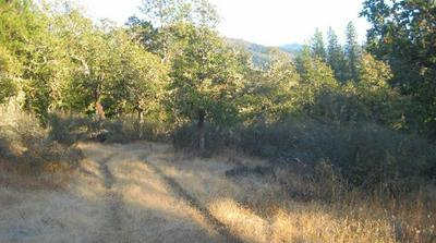 TL1300 WATER GAP ROAD, Williams, OR 97544 - Photo 2