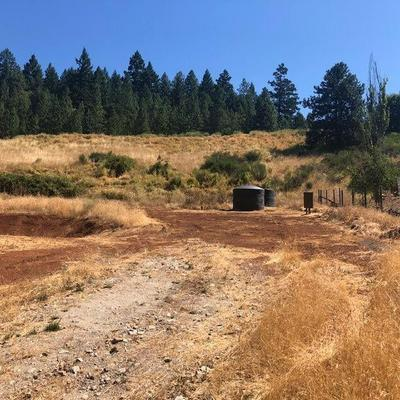 785 OLD STAGE RD, Wolf Creek, OR 97497 - Photo 2