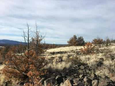 0 SE WALTHER LOOP, Prineville, OR 97754 - Photo 1