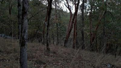 0 SAMS CREEK ROAD, Gold Hill, OR 97525 - Photo 1