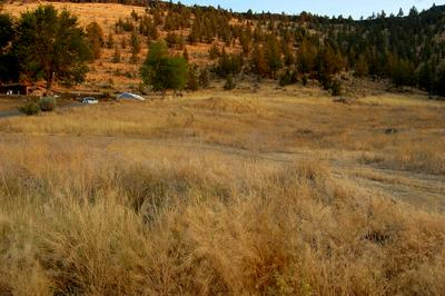 TL 7500 CRESTVIEW ROAD, Prineville, OR 97754 - Photo 1