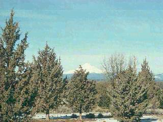 300 WILLOW CREEK ROAD, Lakeview, OR 97630 - Photo 2