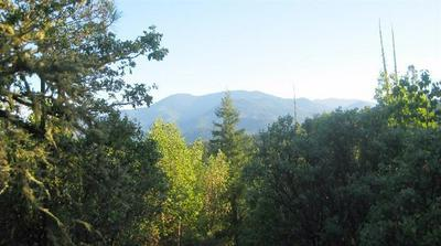 TL1300 WATER GAP ROAD, Williams, OR 97544 - Photo 1
