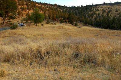 TL 7500 CRESTVIEW ROAD, Prineville, OR 97754 - Photo 2