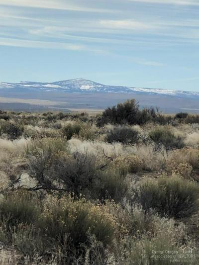 3500 OFF OIL DRI ROAD, CHRISTMAS VALLEY, OR 97541 - Photo 2