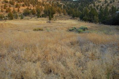 TL 7600 CRESTVIEW ROAD, Prineville, OR 97754 - Photo 1