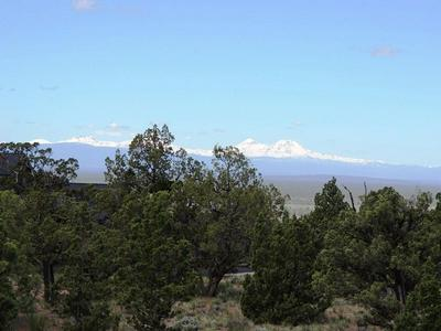 SW HAT ROCK LOOP, Powell Butte, OR 97753 - Photo 2