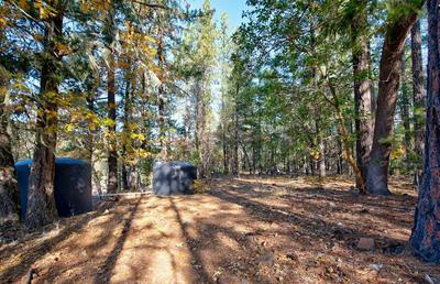 0 TL 201 HIGHWAY 227, TRAIL, OR 97541 - Photo 2