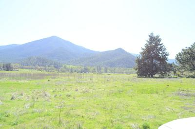233 CHINA GULCH RD, Jacksonville, OR 97530 - Photo 2