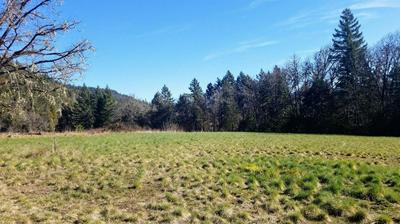 10823 EVANS CREEK ROAD, Rogue River, OR 97537 - Photo 2