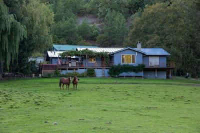 5007 ROGUE RIVER HWY, GOLD HILL, OR 97525 - Photo 2