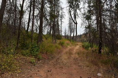 ELK CREEK HIGHWAY, Trail, OR 97541 - Photo 2