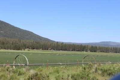 000 MITCHELL ROAD, Dairy, OR 97625 - Photo 2