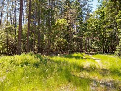 5490 TUNNEL LOOP RD, Grants Pass, OR 97526 - Photo 2
