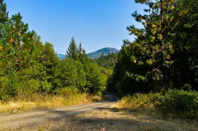 101 W FORK TRAIL CREEK RD, Trail, OR 97541 - Photo 1