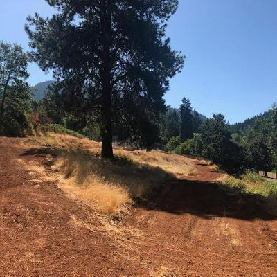785 OLD STAGE RD, Wolf Creek, OR 97497 - Photo 1