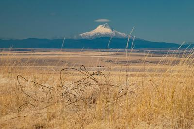 MCCONNELL RANCH ROAD, Mayville, OR 97830 - Photo 1