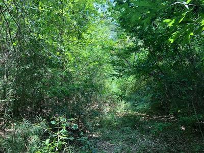 00 TANGLEWOOD RD, Magnolia, MS 39652 - Photo 2