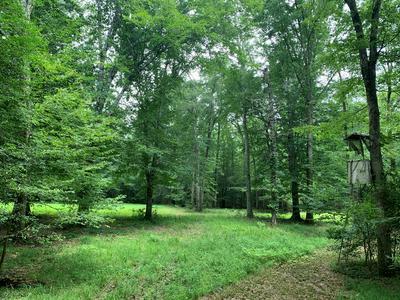 7001 DICKEY MILLS RD, Magnolia, MS 39652 - Photo 1