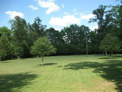 000 MEMORY LANE, Tylertown, MS 39667 - Photo 2