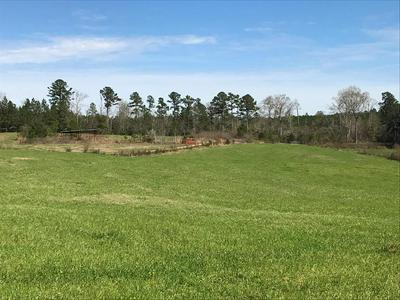 XXXX HARTWELL ROAD, Summit, MS 39666 - Photo 1