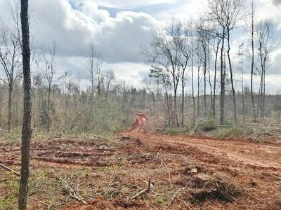 0000 FRED BACOT & HARTWELL ROAD, Summit, MS 39666 - Photo 2
