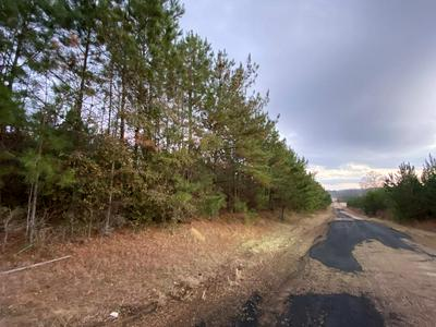 000 RUBY LEA RD., Sontag, MS 39665 - Photo 2