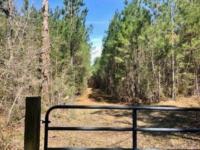 000 SELLERS RD, Bude, MS 39630 - Photo 1