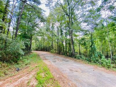 000 CHINA GROVE RD, Tylertown, MS 39667 - Photo 2