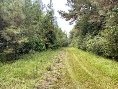 TBD CHARLIE MAGEE, Tylertown, MS 39667 - Photo 2