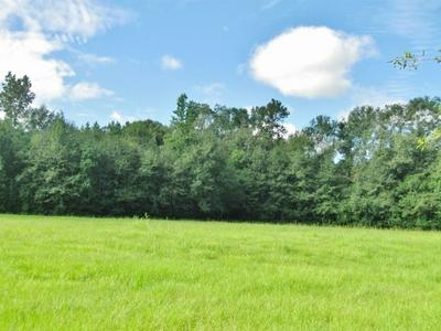 000 SIMS THORNHILL RD, Tylertown, MS 39667 - Photo 2
