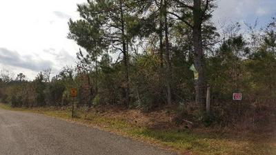1178 MUDLINE RD, MAGNOLIA, MS 39652 - Photo 1