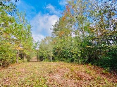 000 TOM WARNER RD, Tylertown, MS 39667 - Photo 1