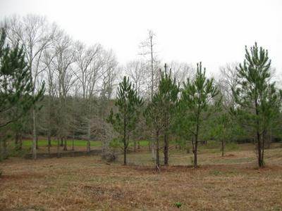 1160 CONERLY RD, McComb, MS 39648 - Photo 2