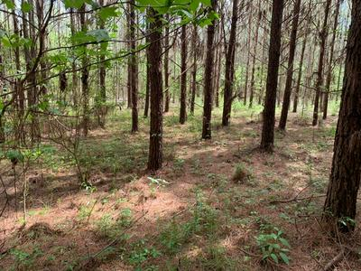 00 MONTICELLO ROAD, WESSON, MS 39191 - Photo 2