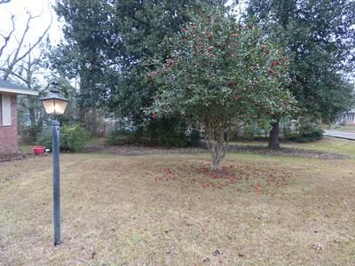 124 PEACH AVE, McComb, MS 39648 - Photo 2