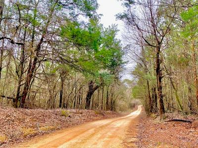 000 BRANCH RD, Smithdale, MS 39664 - Photo 1