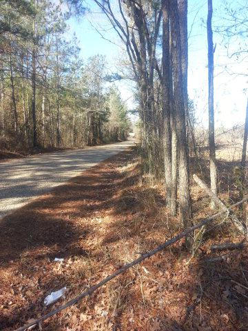 XX WEST LINCOLN DRIVE, Smithdale, MS 39664 - Photo 1