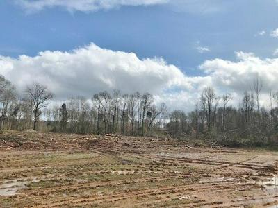 0000 FRED BACOT & HARTWELL ROAD, Summit, MS 39666 - Photo 1
