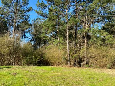 5560A HIGHWAY 98 E, Meadville, MS 39653 - Photo 2
